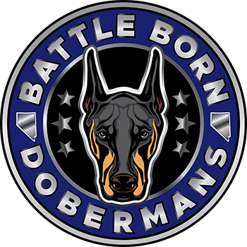 Battle Born Dobermans