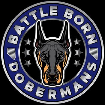 Battle Born Dobermans