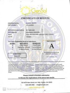Anakonda Certification